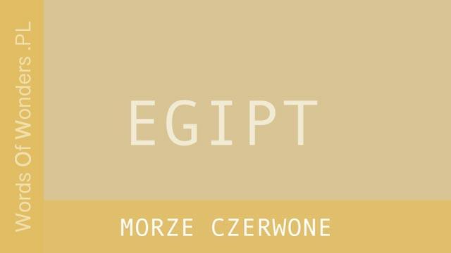 WORDS OF WONDERS MORZE CZERWONE