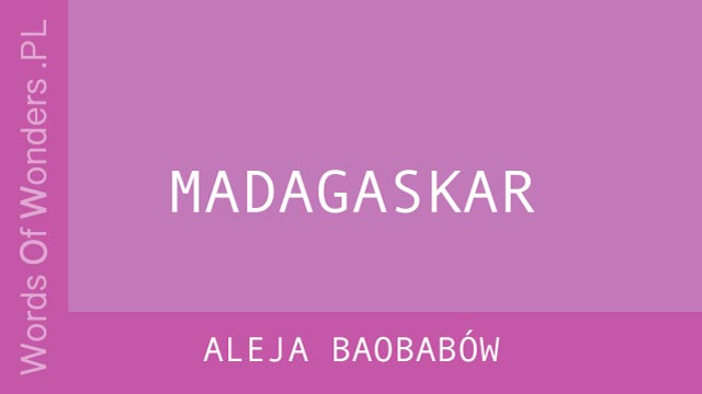 WOW Aleja Baobabów