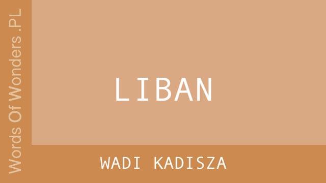WOW Wadi Kadisza
