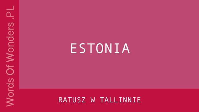WOW Ratusz W Tallinnie